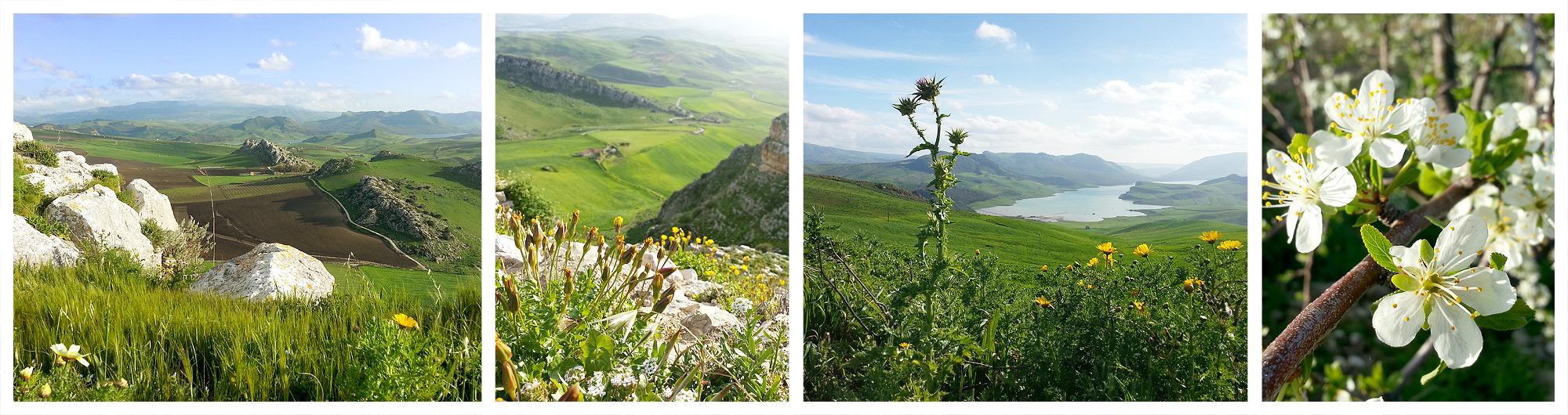 In April Sicily is still very green.